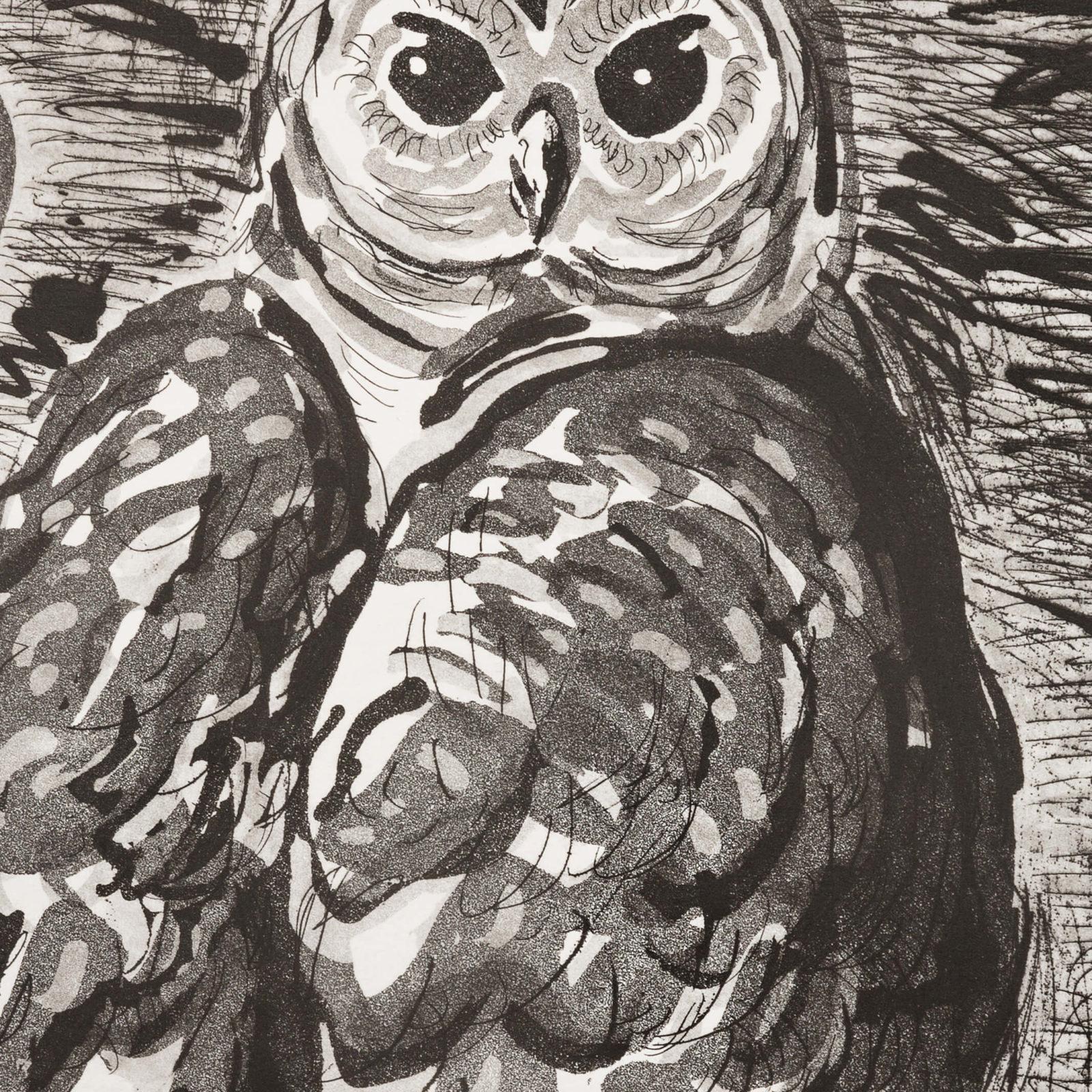 Barn Owl (aquatint) hover