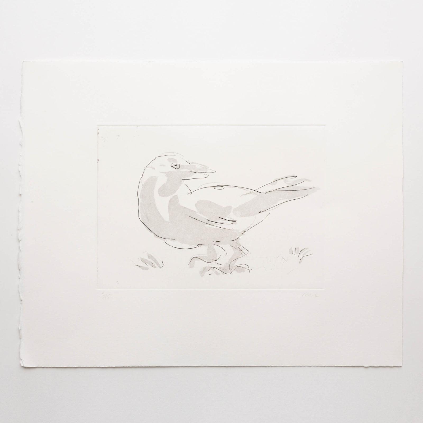 Bird (aquatint)
